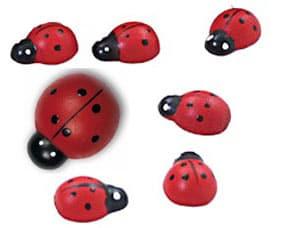 Houten stickers Lieveheerbeest 10 kleine en 1 groot