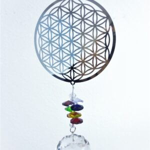 Cosmo Spinner bloem flower of live + Kristal