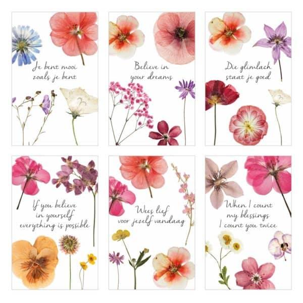 Le Jardin zakje glimlach 10 kaartjes teksten