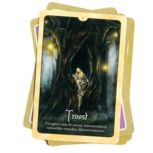 Het orakel van de feeën – Lucy Cavendish